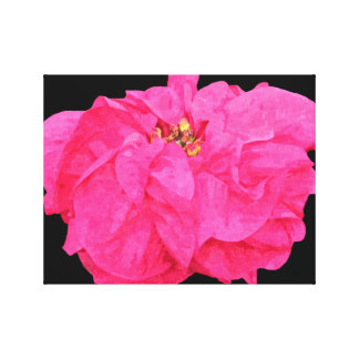 Poinsettia Wrapped Canvas