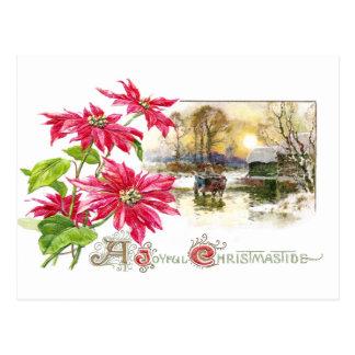 Poinsettias and Country Vignette Vintage Xmas Postcard