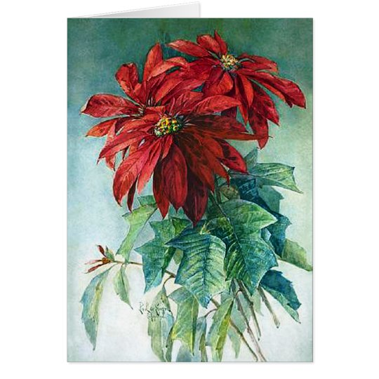 Poinsettias Watercolor Fine Art Greeting Card