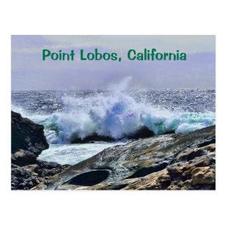 Point Lobos Central Coast California Postcard