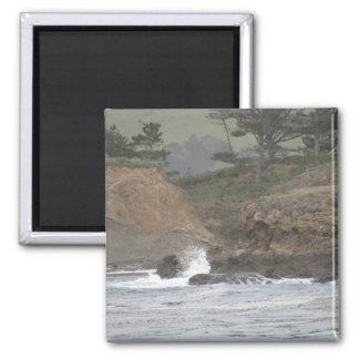 Point Lobos Magnet