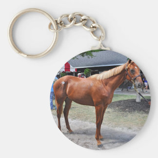 Point of Entry Colt Basic Round Button Key Ring