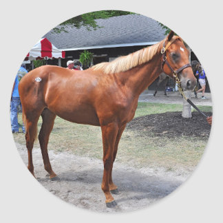 Point of Entry Colt Classic Round Sticker