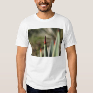 point t-shirts