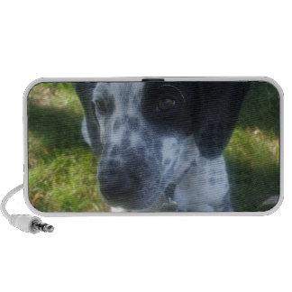 Pointer Dog Portable Speakers