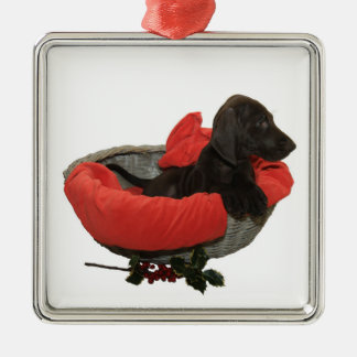 Pointer Sister in a basket Silver-Colored Square Decoration