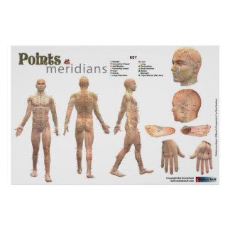 Points and meridians of the body - Annotated Poster