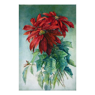 Pointsettias Watercolor Fine Art Print