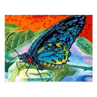 Poised Butterfly II Postcard