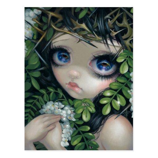 """""""Poisonous Beauties XII: Black Locust"""" Postcard"""