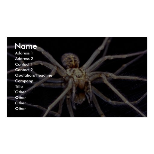 Poisonous menacing recluse spider business card templates
