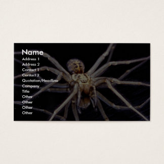 Poisonous menacing recluse spider business card