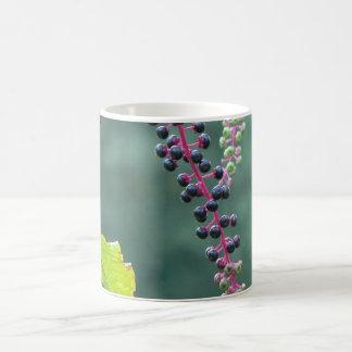Pokeweed with Ripening Berries Coffee Mug