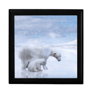 Polar bear and cub gift box
