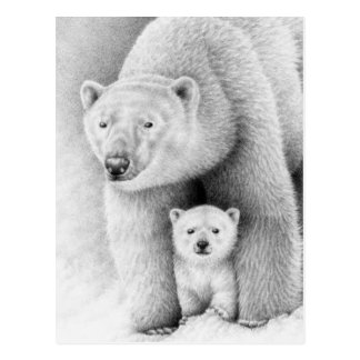 Polar Bear and Cub Postcard