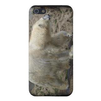 Polar Bear Arctic Animal Bear-lover Case For The iPhone 5