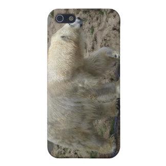 Polar Bear Arctic Animal Bear-lover iPhone 5/5S Cases