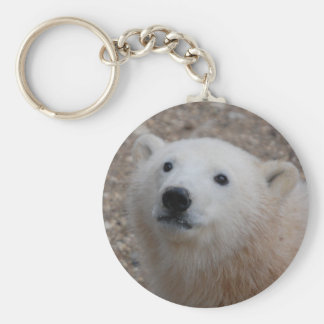 Polar Bear Cub Basic Round Button Key Ring