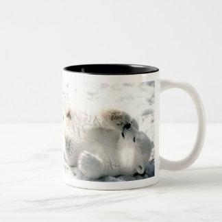 Polar Bear Cub Mug