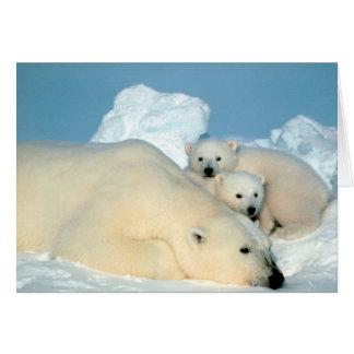 Polar Bear & Cubs by Steve Amstrup Greeting Card