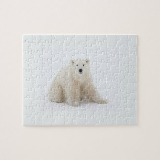 Polar Bear Jigsaw Puzzle