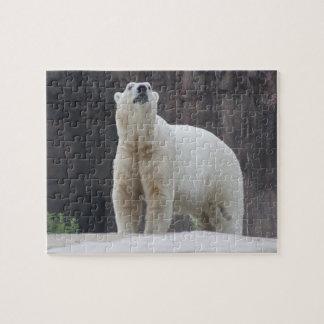 Polar Bear Jigsaw Puzzle