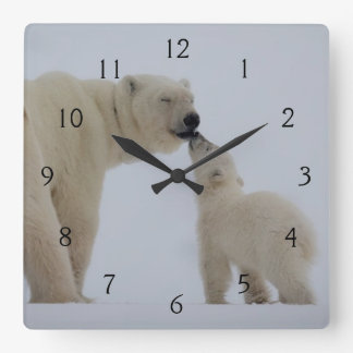 Polar Bear Mother with Cub Square Wall Clock
