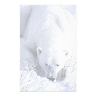 Polar Bear Nap Stationery