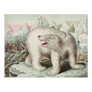 Polar Bear Poster Postcard