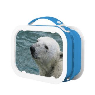 Polar Bear Profile Lunchboxes