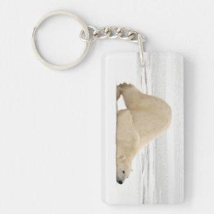 Polar bear scratching itself on frozen tundra key ring