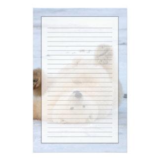 polar bear, Ursus maritimus, cub rolling 3 Personalized Stationery