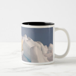 polar bear, Ursus maritimus, in rough ice on 2 Two-Tone Mug