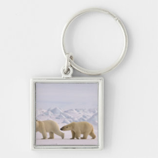 polar bear, Ursus maritimus, pair in rough ice Silver-Colored Square Key Ring