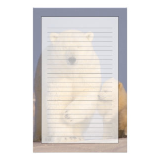 polar bear, Ursus maritimus, sow with newborn 3 Personalised Stationery