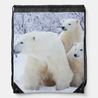 Polar Bears and Two cubs Backpack
