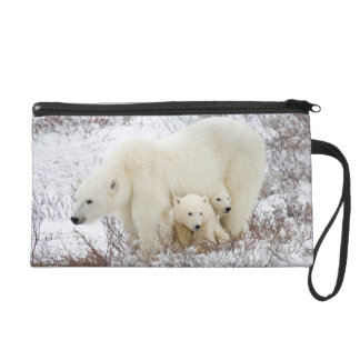 Polar Bears female and Two cubs Wristlets