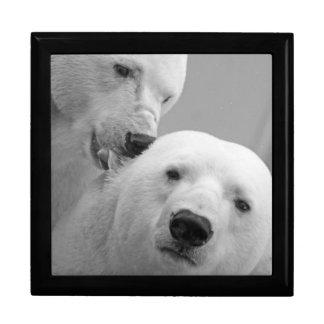 Polar bears gift box