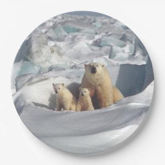 Polar Bears Mother Cub Arctic Wildlife Plates