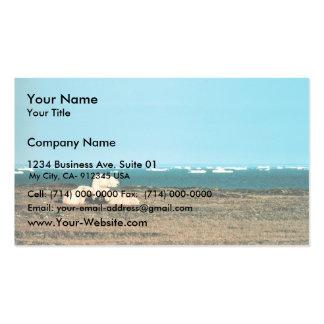 Polar Bears on Barter Island Pack Of Standard Business Cards