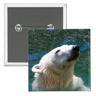 Polar bears smile 15 cm square badge