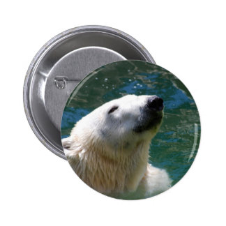Polar bears smile 6 cm round badge