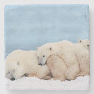 Polar Bears Stone Coaster