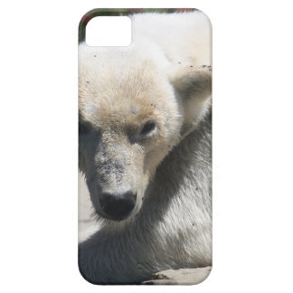 Polar Beer Barely There iPhone 5 Case