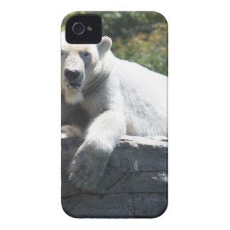 Polar Beer Case-Mate iPhone 4 Case