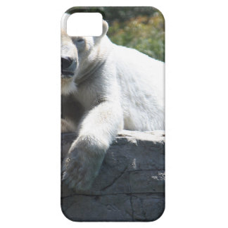 Polar Beer iPhone 5 Cover