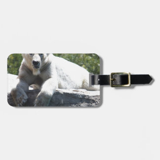 Polar Beer Luggage Tag