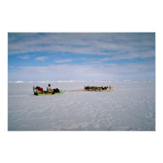 Polar Eskimo, Greenland Poster
