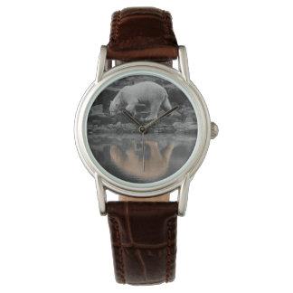 Polar Opposites Watch