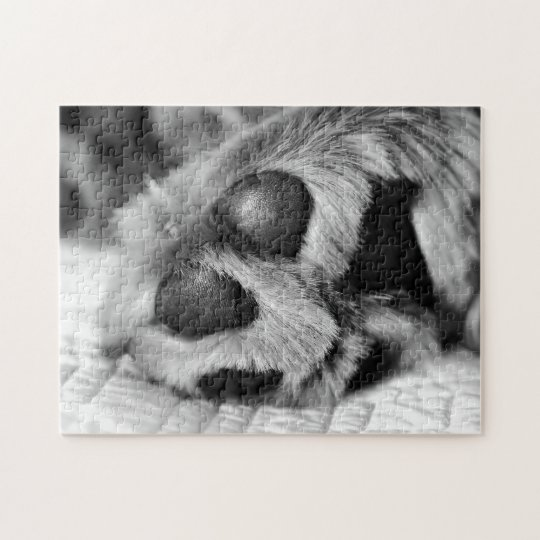 Polar Paws Golden Retriever Jigsaw Puzzle